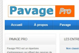 Pavage Pro